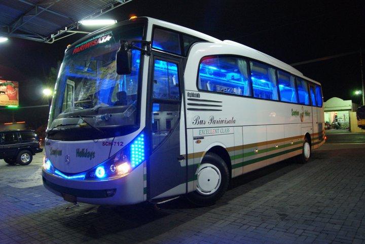 Bus Scorpion Holidays - Night Action ⋆ Lena Wisata