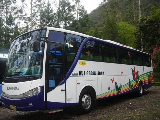 Bus Surya Putra ⋆ Lena Wisata